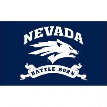 Nevada Battle Born Flags