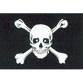 Jolly Roger Motorcycle Flag