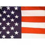 3' x 5' Printed Polyester U.S. Flag