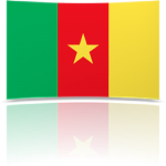 Cameroon 4 x 6 Mini Flag