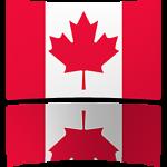 Canada 8 x 12 Mini Flag